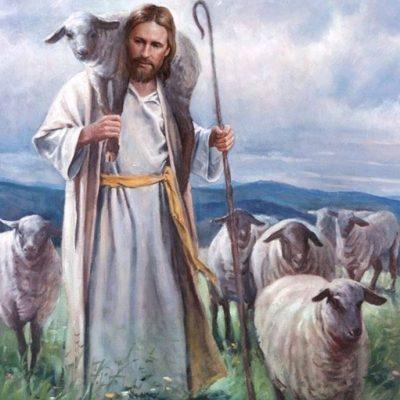 dobry pastier